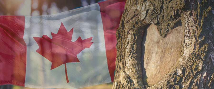 Happy Canada Day From Your UTS Tree Care Team